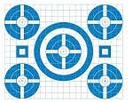 Blue Five Spot Grid Bullseye - 17.5x22.5 (COPY)