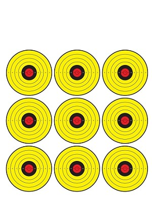 Yellow, Red, Black Nine Spot Bullseye - 19x25