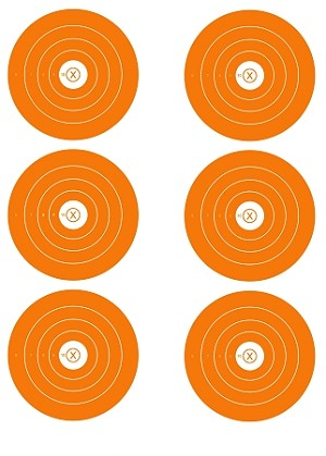 Orange Six Spot Bullseye - 19x25
